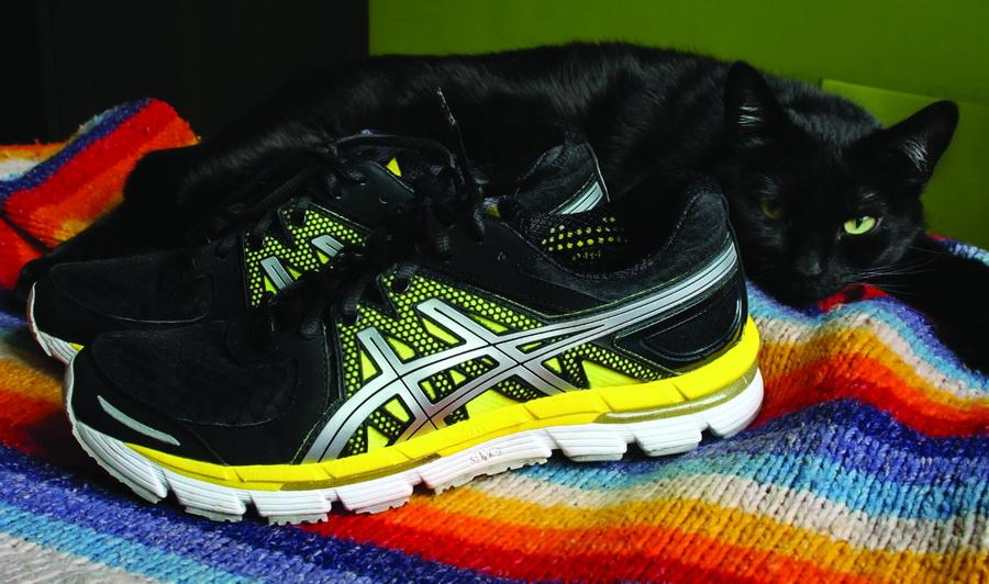 ASICS Gel-Excel 33 - minimalistyczne buty do biegania od ASICS