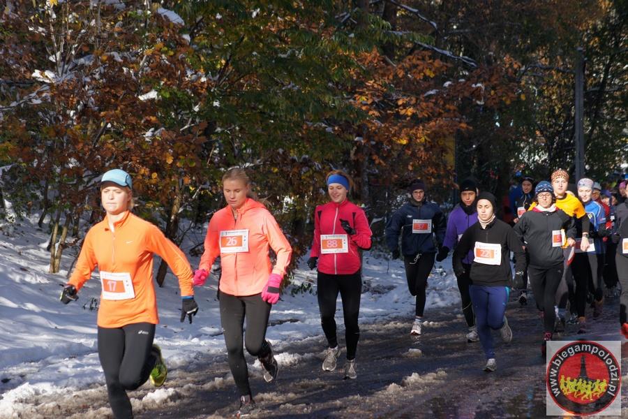 Półmaraton Szakala - startDSC00028