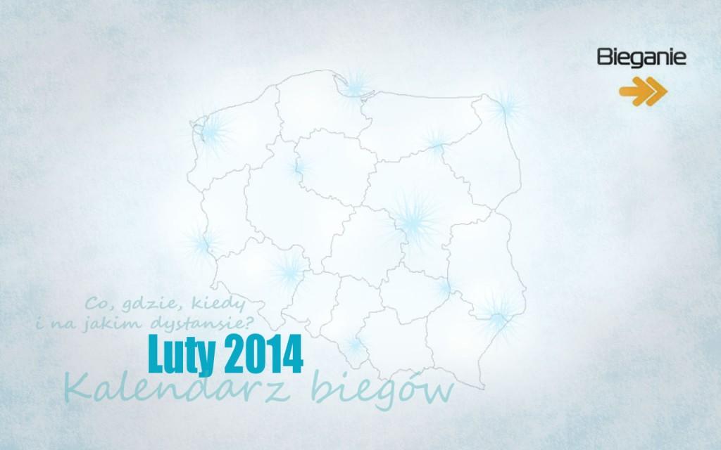 Kalendarz biegów luty 2014