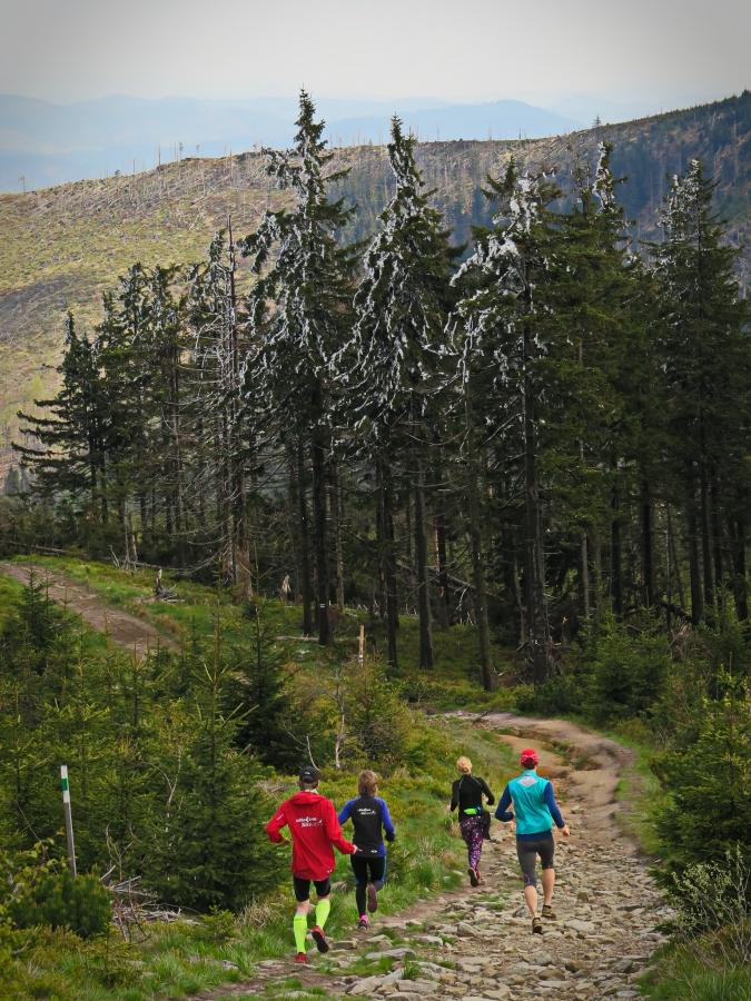 wycieczka biegowa Fot. Krzysztof Dołęgowski