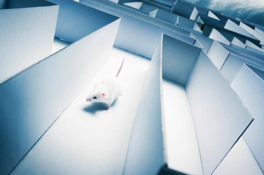 Przetrenowanie, zagubienie w treningu. Fot. istockphoto.com