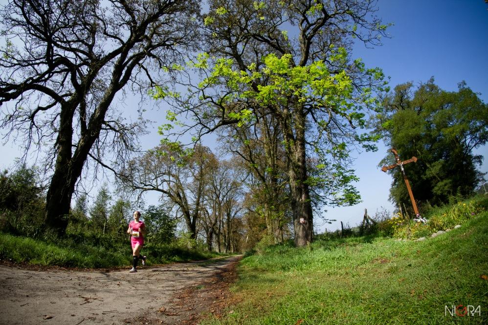 2014-09-20 Forest Run fot.G.Lisowski-16