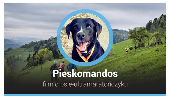 pk_top2