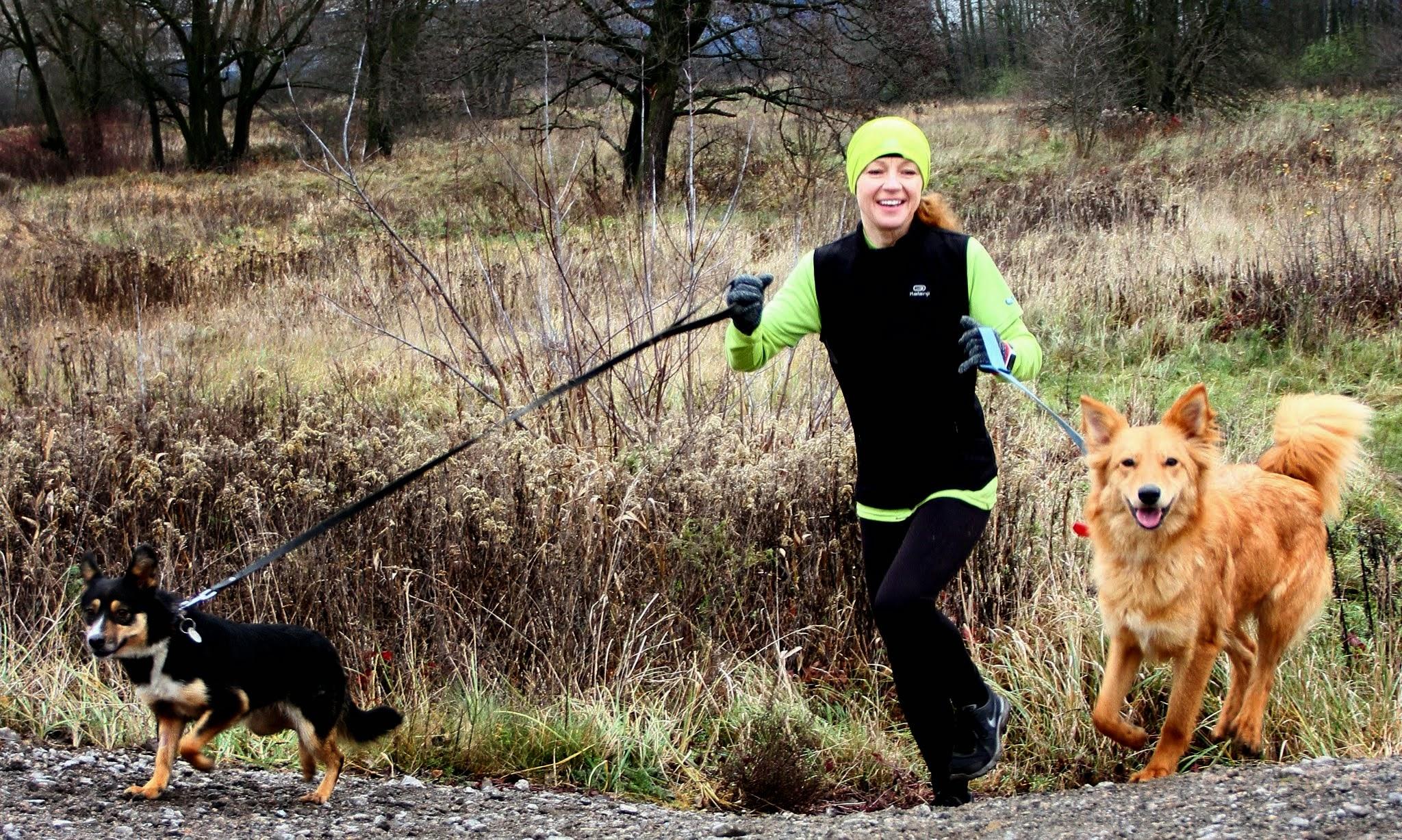 Dog Running. Fot. Marek Tęcza 05