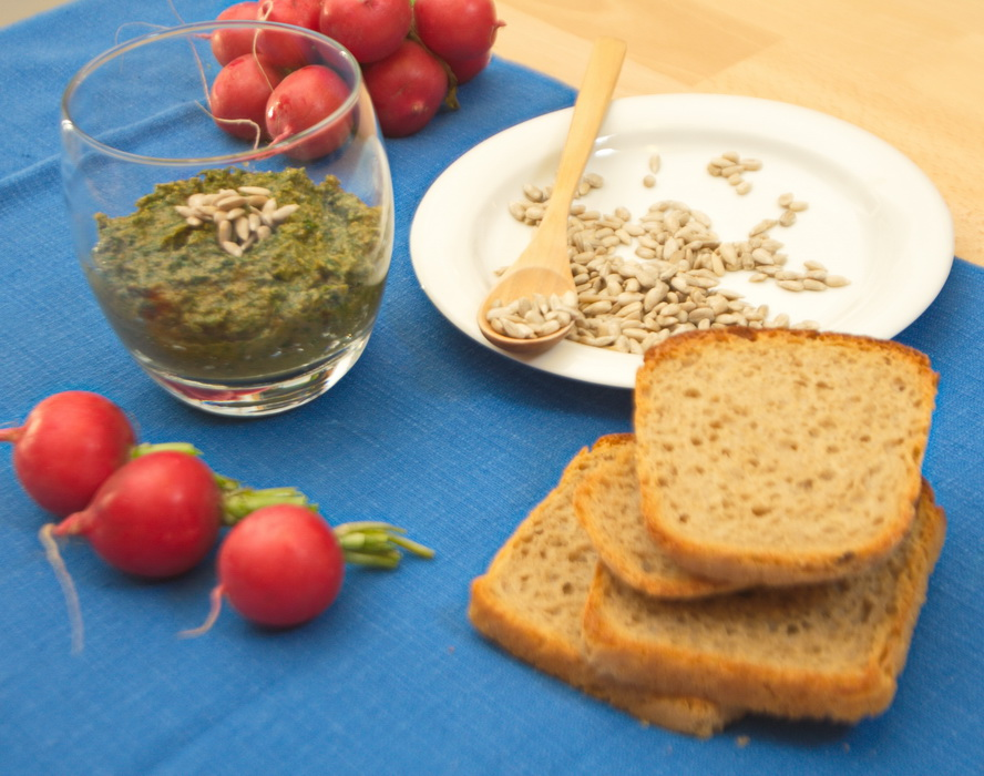 Pesto z rzodkiewki, chlebem i rzodkiewkami. Fot. Krzysztof Dołęgowski
