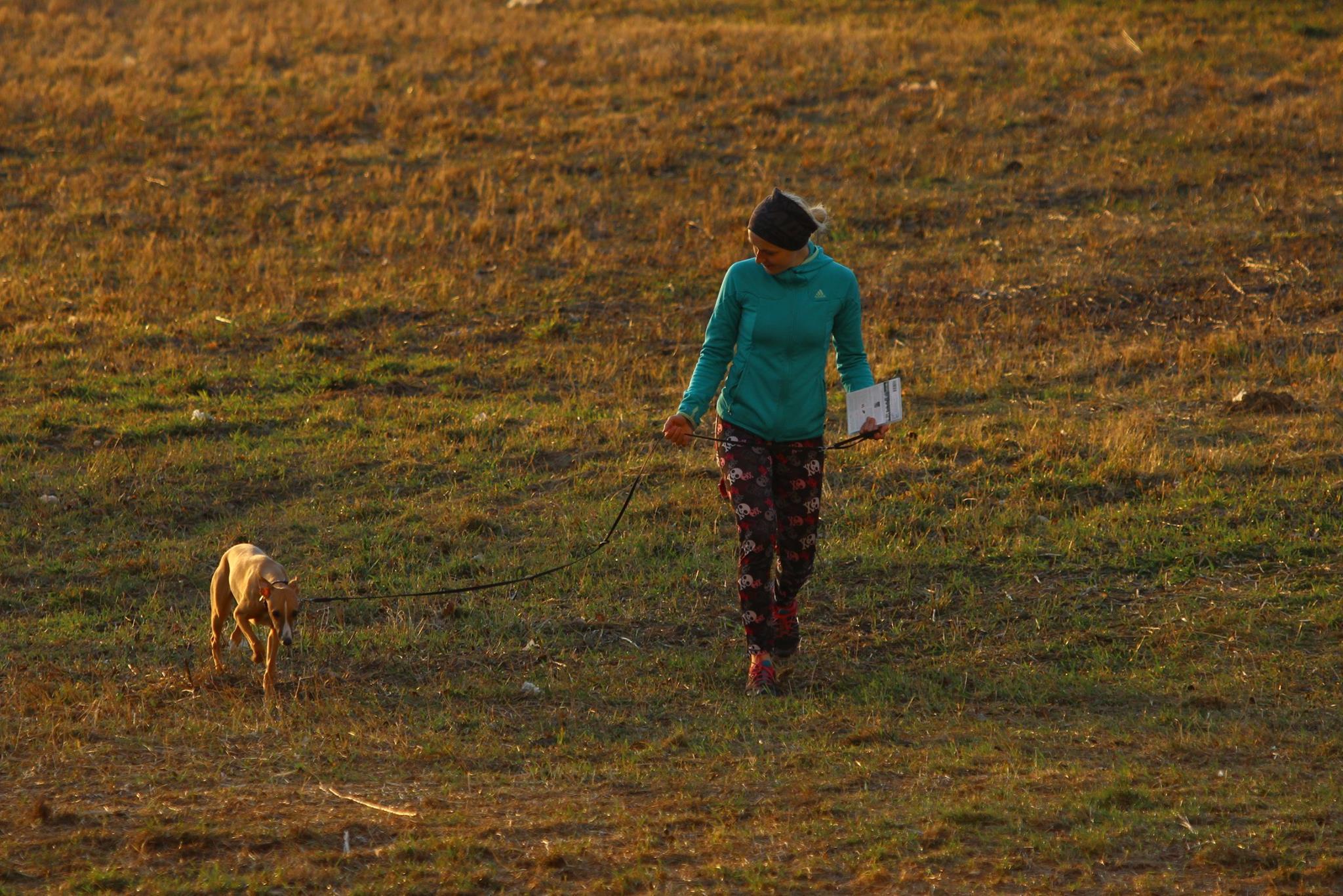 Spacer z psem. Fot. Dominik Kaczorek