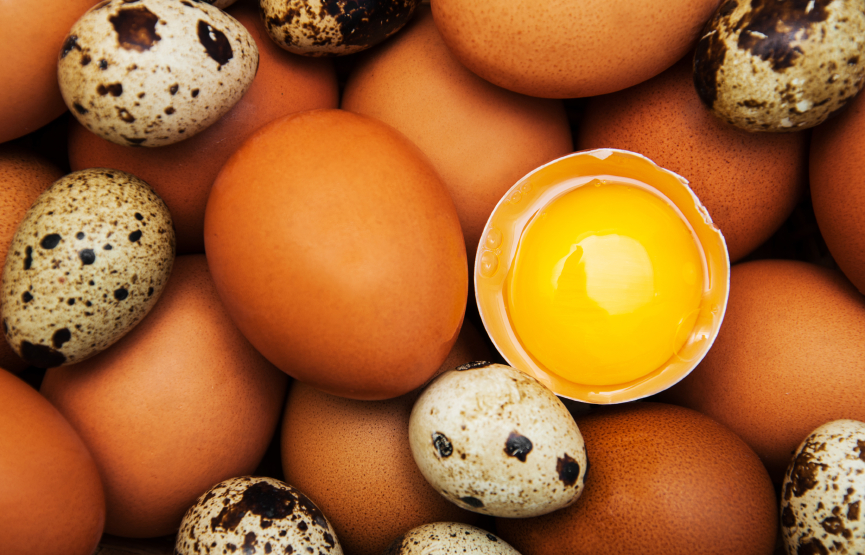different types of eggs - food background