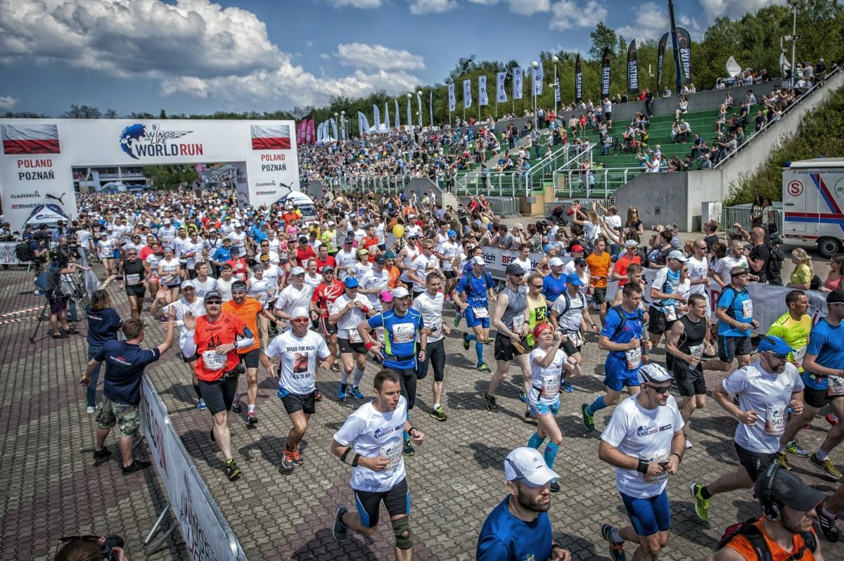 Lukasz Nazdraczew, Wings for Life World Run